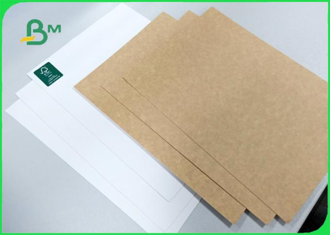250gsm smooth surface FDA white face top of kraft liner for advertising Design