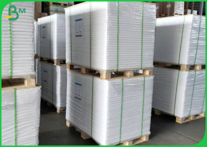 Soap Packaging Paper 10g PE Coated Rolls 50gsm 70gsm Offset Printing Paper